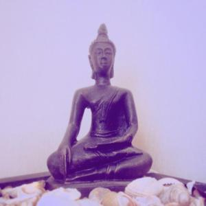 Guided Meditation - online & live